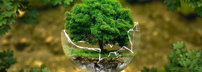 Arbeitskreis Umwelt